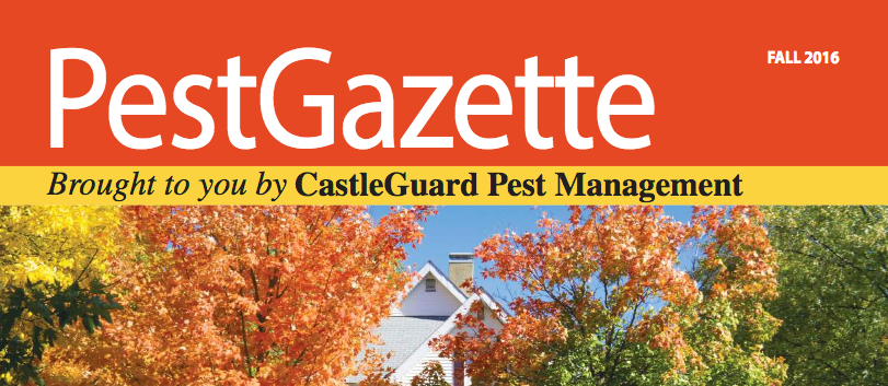 PestGazette Fall 2016