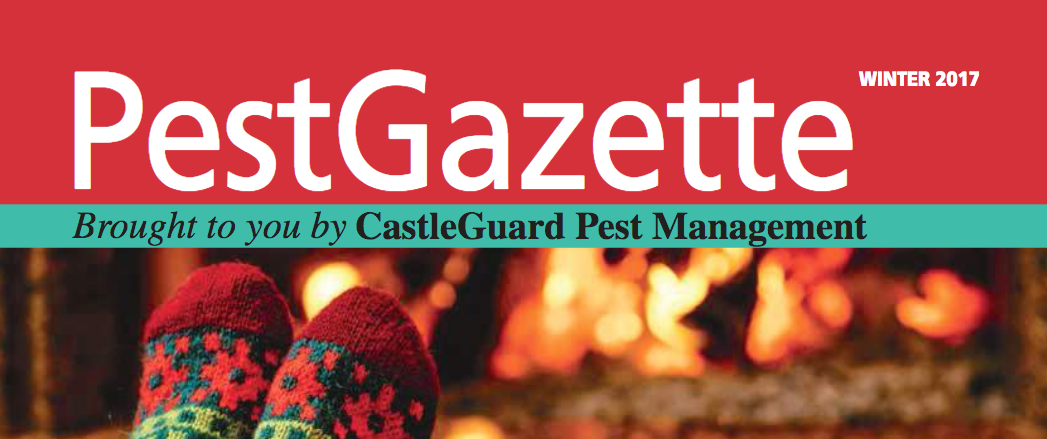PestGazette Winter 2017